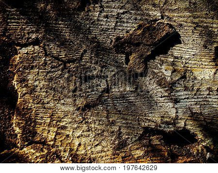 Wood texture, old wooden background, abstract grunge background