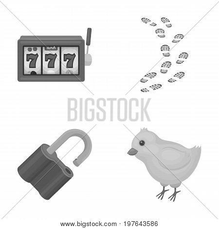 casino, detective and other  icon in cartoon style. bird, security icons in set collection.