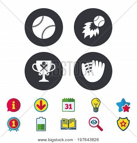 Baseball sport icons. Ball with glove and two crosswise bats signs. Fireball with award cup symbol. Calendar, Information and Download signs. Stars, Award and Book icons. Light bulb, Shield and Search