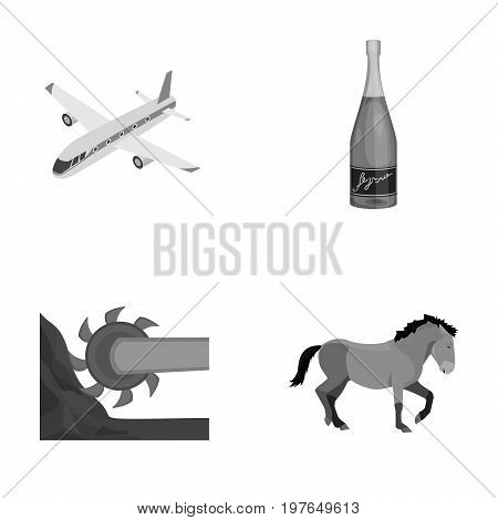 sport, celebration, winemaking and other  icon in cartoon style.competition, animal, transportation, icons in set collection.