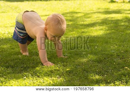 Funny Baby Boy Toddle Outdoor On The Lawn