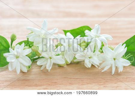 Jasmine flower Close-up Jasmine flowers on a wood table