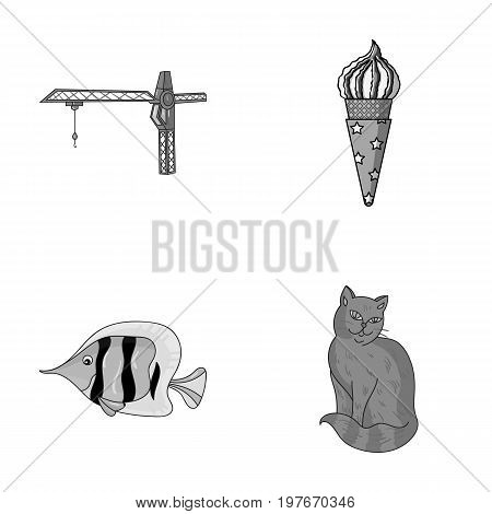 tail, Animal and other  icon in cartoon style. Desert, rock icons in set collection.