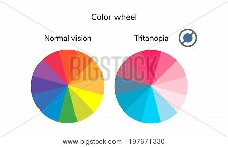 Vector Illustration, Infographics, Color Wheel, Palette, Normal