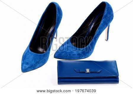 Clutch And Female Footwear. Accessories In Formal Style