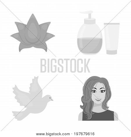 entertainment, cosmetology, hairdresser and other  icon in monochrome style.red, makeup, business, icons in set collection