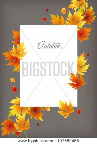 Falling leaves vector background. Autumn illustration with white sheet and lettering on grey backdrop/ground. Space for text.