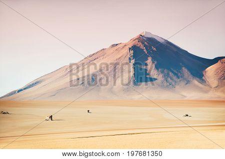Salvador Dali Desert In Plateau Altiplano, Bolivia
