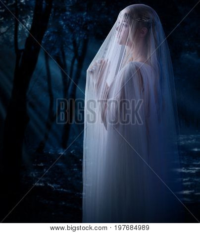Elven girl in the forest poster