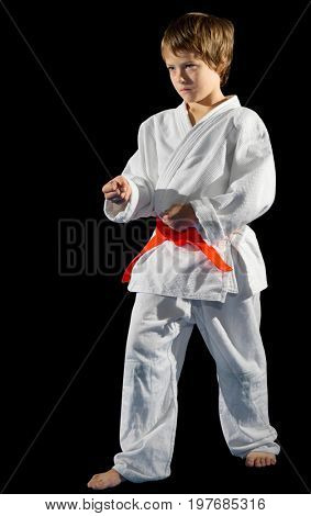 Boy martial arts fighter isolated