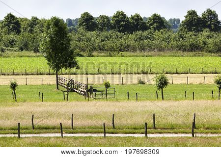Farmland divided in small parts in the Netherlands