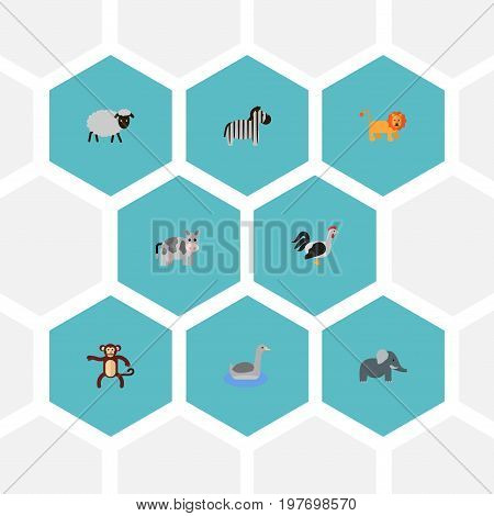 Flat Icons Waterbird, Trunked Animal, Wildcat And Other Vector Elements