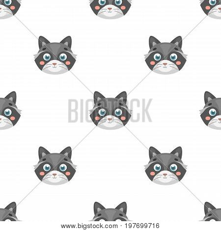 Raccoon muzzle icon in cartoon design isolated on white background. Animal muzzle symbol stock vector illustration.
