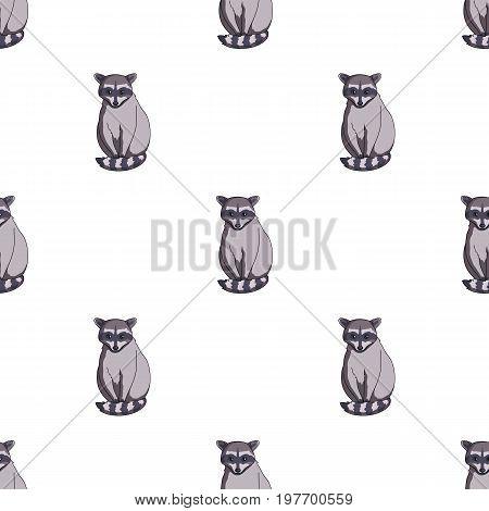 Raccoon.Animals single icon in cartoon style vector symbol stock illustration .