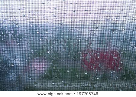 Rain, Mosquito Net, Summer Rain, Water, Warm Rain, Abstract Background, City , Foliage, Window And D