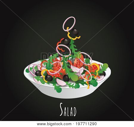 Vegetable salad vector illustration. A plate of summer salad from vegetables. Dietary salad