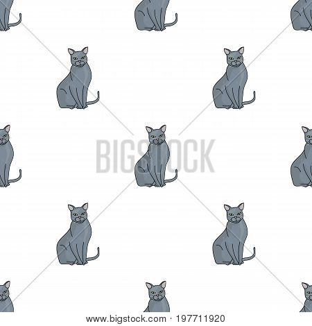 Chartreux icon in cartoon design isolated on white background. Cat breeds symbol stock vector illustration.