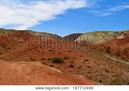 Slope of red ferruginous hills and succulents in Altai mountains. Altay Republic Russia.