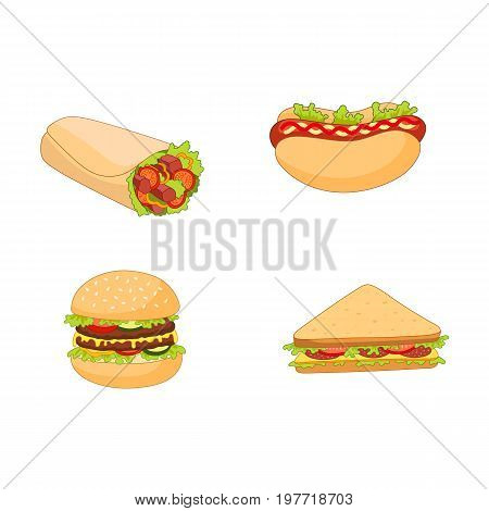 Vector burger hot dog roll shawarma sandwich set. Flat cartoon isolated illustration on a white background. Fast junk food concept. Tasty triangular sandwich, shawarma doner kebab, humburger, hot dog