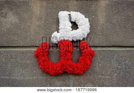 kotwica - the emblem of the Polish resistance against German occupation in World War II peaking in the Warsaw Uprising. It's made of flowers on a concrete wall.