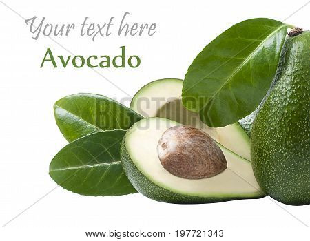 avacado with leaves on a white background