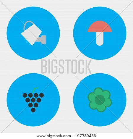 Elements Flower, Wine, Bailer And Other Synonyms Grape, Boletus And Can.  Vector Illustration Set Of Simple Gardening Icons.