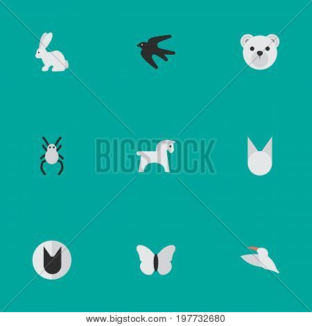 Elements Tarantula, Sparrow, Crane And Other Synonyms Bear, Cute And Hare.  Vector Illustration Set Of Simple Zoo Icons.