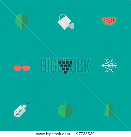 Elements Melon, Wine, Bailer And Other Synonyms Snowflake, Grape And Wheat.  Vector Illustration Set Of Simple Horticulture Icons.