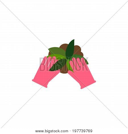 Plant Vector Element Can Be Used For Sow, Plant, Glove Design Concept.  Isolated Sow Flat Icon.