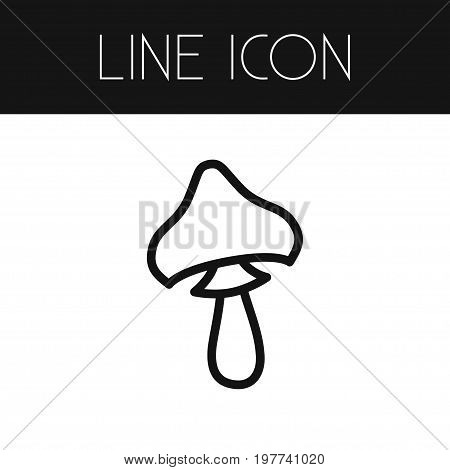 Mushroom Vector Element Can Be Used For Cep, Mushroom, Champignon Design Concept.  Isolated Cep Outline.