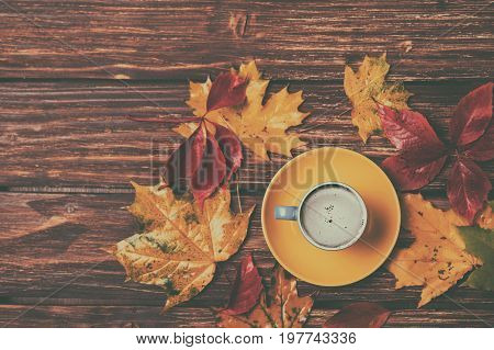 Autumn Leaves And Coffee Cup On Wooden Table.