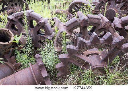 Rusting Wheels In Field