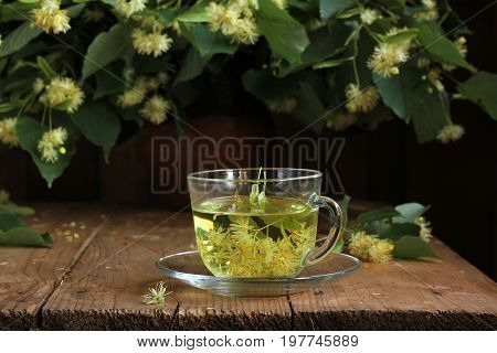 Medicinal the decoction of lime flowers in the glass. Flowering branches of a Linden. A folk remedy for the common cold.
