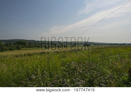 Russian hot summer vast field beautiful landscape shot with fine blue sky and clouds