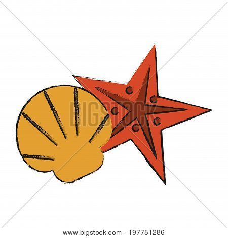 Colorful starfish and seashell doodle over white background vector illustration