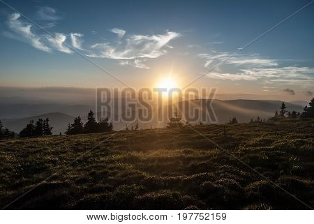 evening mountain meadow with isolated trees and hills on Jeleni hrbet hill above Jeleni studanka in Jeseniky mountains in Czech republic with sun sunlight and blue sky with few small clouds