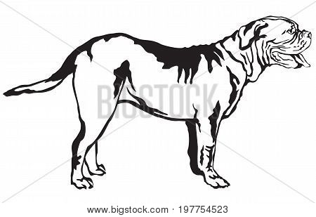 Decorative portrait of standing in profile Dogue de Bordeaux vector isolated illustration in black color on white background