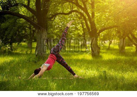 Morning yoga practice. Woman standing in downward facing dog pose with raised leg. Yoga asana Eka Pada Adho Mukha Svanasana. Toned image.