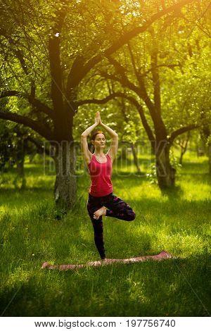 Yoga balance asana training. Woman in garden standing in Vrksasana, exercising yoga in the morning. Toned image.