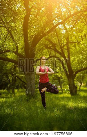 Young woman doing yoga training. Female in garden balancing in yoga tree pose. Woman doing Vrksasana yoga pose. Toned image.