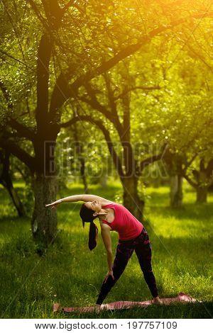 Young female practicing yoga in extended triangle pose. Woman exercising yoga asana Utthita Trikonasana in the garden. Toned image.