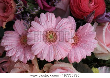Big pink gerbers in a mixed floral arrangement