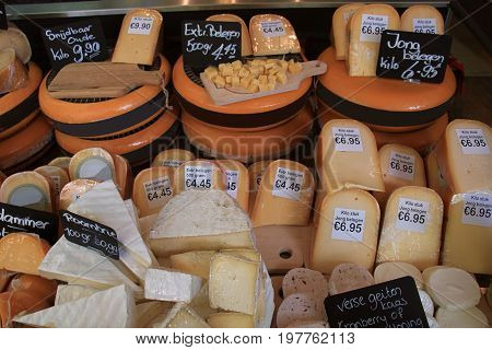 Traditional Dutch cheeses on display in a store (text on labels: price and product information in Dutch old cheese and medium