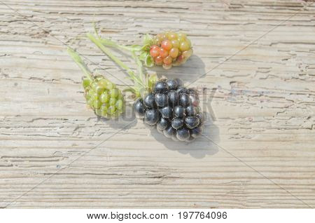 Fresh Blackberries On Wooden Background