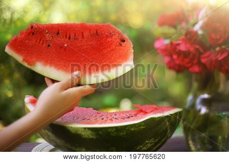 human hand holding water melon slice on the green garden background