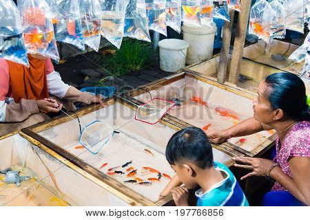 Locals Buying Golden Fish At Gianyar Night Market In Bali, Indonesia