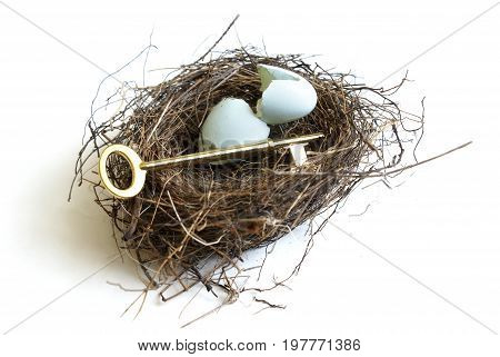 A golden key and nest egg to symbolize the secrets to a successful life.