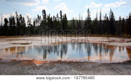 Lodge pole pine trees reflected in Emerald Pool hot spring in the Black Sand Geyser Basin in Yellowstone National Park in Wyoming USA