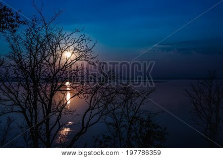 Silhouettes of dry tree against sky and cloud over tranquil sea. Nighttime with moonlight and reflection in water. Full moon behind trees beautiful nature in the evening.