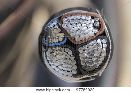 Cross Section Of Black Industrial Underground Cable 2